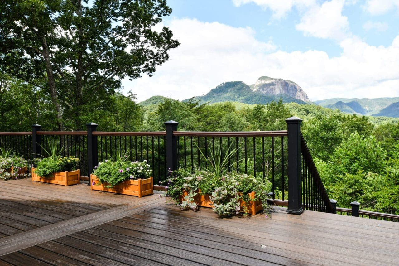 flowers on a deck overlook mountains and trees